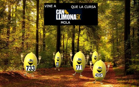 can llimona (1)